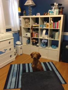 Otto in the babys room