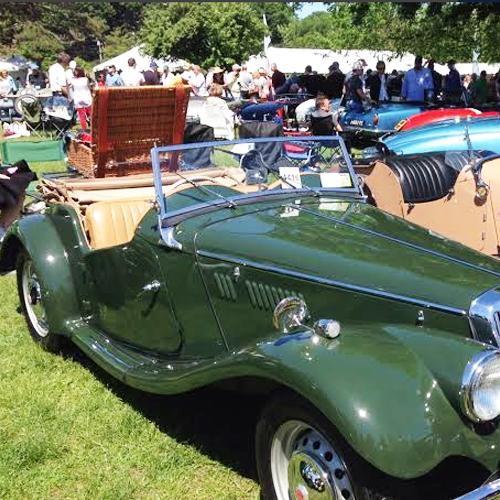 green-picnic-car